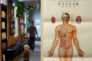 Doctor of Traditional Chinese Medicine