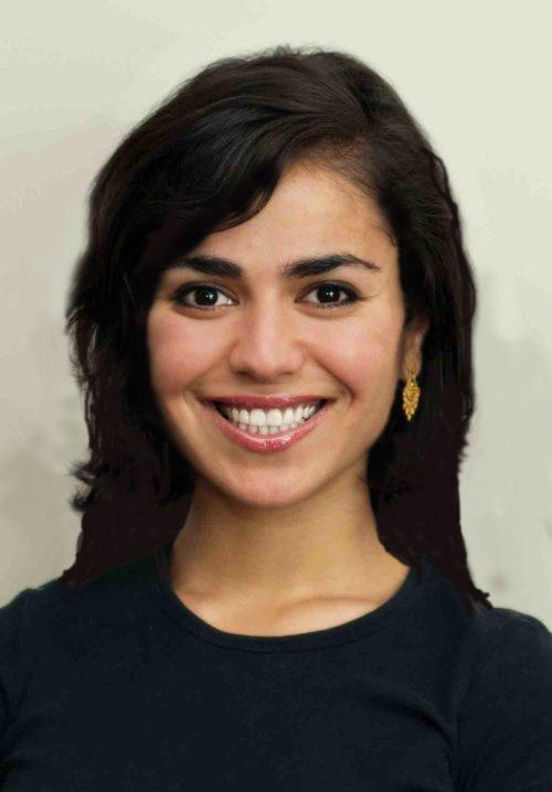 elham ansari
