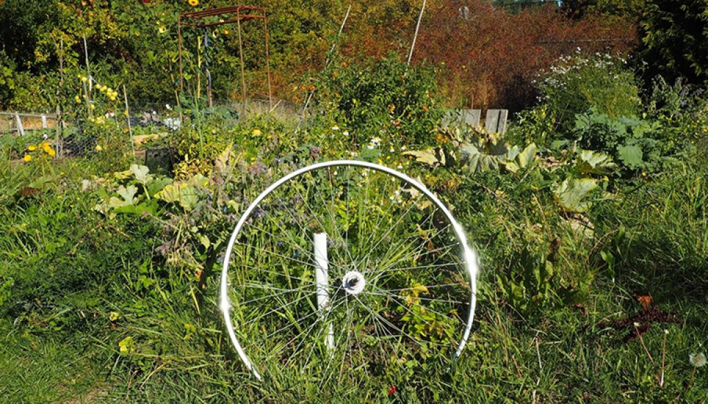 glinting bicycle rim